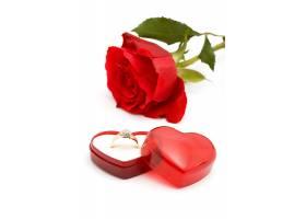 玫瑰花与戒指