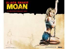 电影,黑色,蛇,抱怨,壁纸,(2)