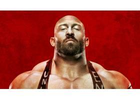电影,WWE,战场,2013,壁纸,
