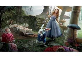 电影,爱丽丝,在,仙境,(2010年),爱丽丝,在,仙境,壁纸,