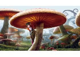 电影,爱丽丝,在,仙境,(2010年),男人,Depp,疯的,帽商,幻想,蘑菇,