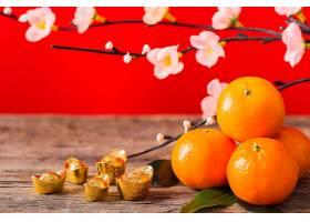 美丽的中国新年概念_1123872401