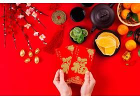 美丽的中国新年概念_1123872501