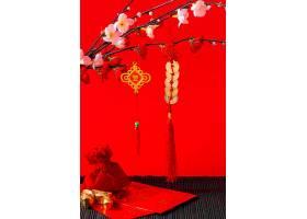 美丽的中国新年概念_1123877901