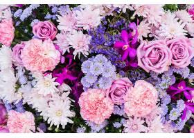 粉色和紫色的花_97627001