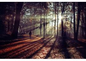 走在一条覆盖着秋叶的美丽小路上的人_997128001
