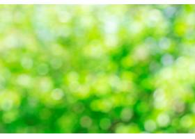 阳光散焦的绿色自然背景抽象的波克效果为_868570501