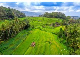 印度尼西亚巴厘岛的梯田鸟瞰_1130642601
