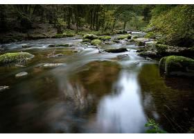 森林中有许多岩层覆盖着苔藓的河流的美丽风_918521801