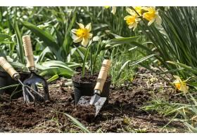 在花园里种花园艺用具花卉_904593901