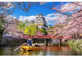 日本姬路的樱花和城堡_1082439401