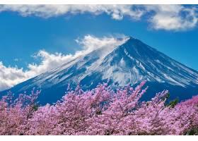 日本春天的富士山和樱花_1069564601