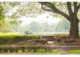 在阳光明媚的日子里在公园里骑自行车_90185901