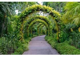 在一座美丽的花草拱门下的人行道_1047747901
