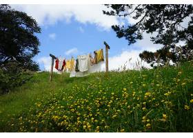 新洗的衣服在蓝天下的花园里晾干的美丽镜头_1189086501