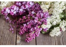 深色木桌上盛开的新鲜紫丁香枝条_1156716301