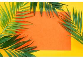 在黄色背景上的空白橙色纸框上种植树叶_276628101