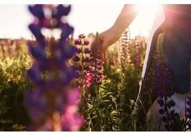 夕阳西下女人用手抚摸田野里的花草_333914601