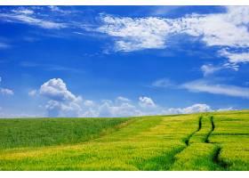 天空布满云彩的农田_94972401