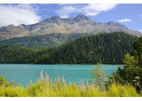 瑞士香普费尔高山湖阳光下绿树成荫群山_1189015501