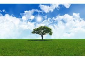 有树的景观_103677101