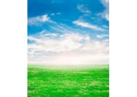以天空为背景的新鲜草地_91296101