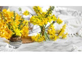 春暖花开处处洋溢着温馨的家的气息春天_1010727501