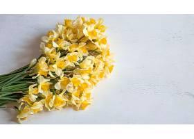 春暖花开淡木质背景上开着黄色水仙花背_1010728401