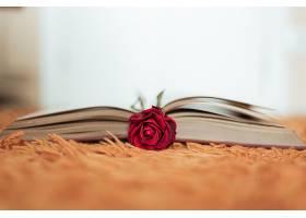 翻开的书里藏着红玫瑰_1167810101