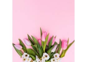 白色和粉红色的花_169138501