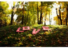 红色的字母爱躺在森林的草地上_123454801