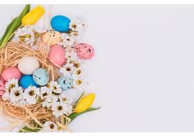 蛋和巢附近的花朵_169129301