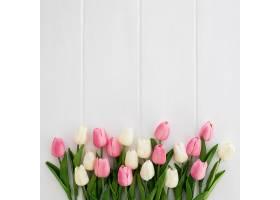 白色木质背景上白色和粉红色相间的漂亮郁金_382655601