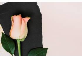 白色桌上有黑色纸张的粉色玫瑰花_378738701