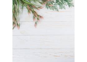 木桌上的绿色植物枝条_390117201