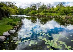 被许多绿树环绕的公园里有云倒影的湖_1106260001
