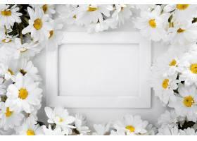 被雏菊包围的俯视图幅_896973801
