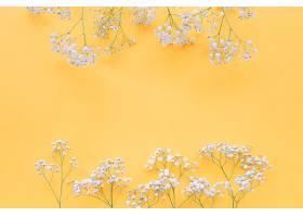 白色的花朵镶嵌在黄色的背景上_276618001