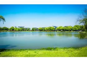 绿色公园_117584901