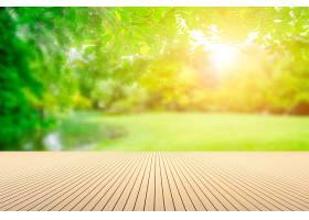 绿色公园景观_127831701