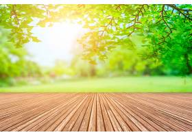 绿色公园景观_127831901