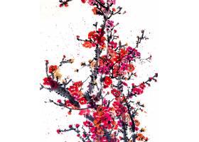 框架图中国日本水生植物学_120591701