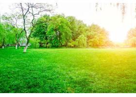 绿色公园景观_127832001
