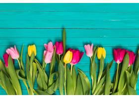 绿色木质底板底部摆放五颜六色的郁金香花朵_408571701