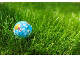 绿草地上的地球球特写_474308901