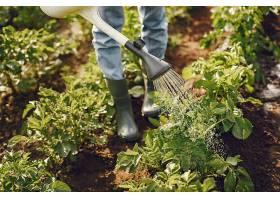 戴着帽子的女人拿着漏斗在花园里工作_965955901