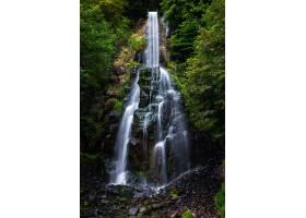 流经德国森林的特鲁塞特勒瀑布_1018588101