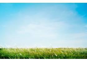 户外绿草如茵的公园概念_374192201