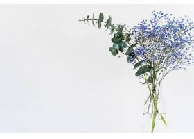 花瓶里的一束束新鲜的树枝和植物_428518001