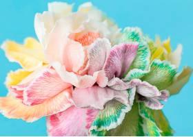 美丽的巨花盛开_1255883901